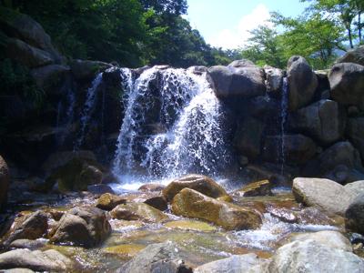 20080813_makino.jpg