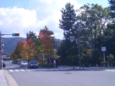 20081101_1.jpg
